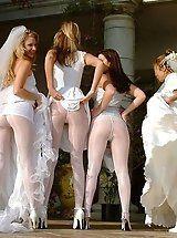 Weding panty upskirt
