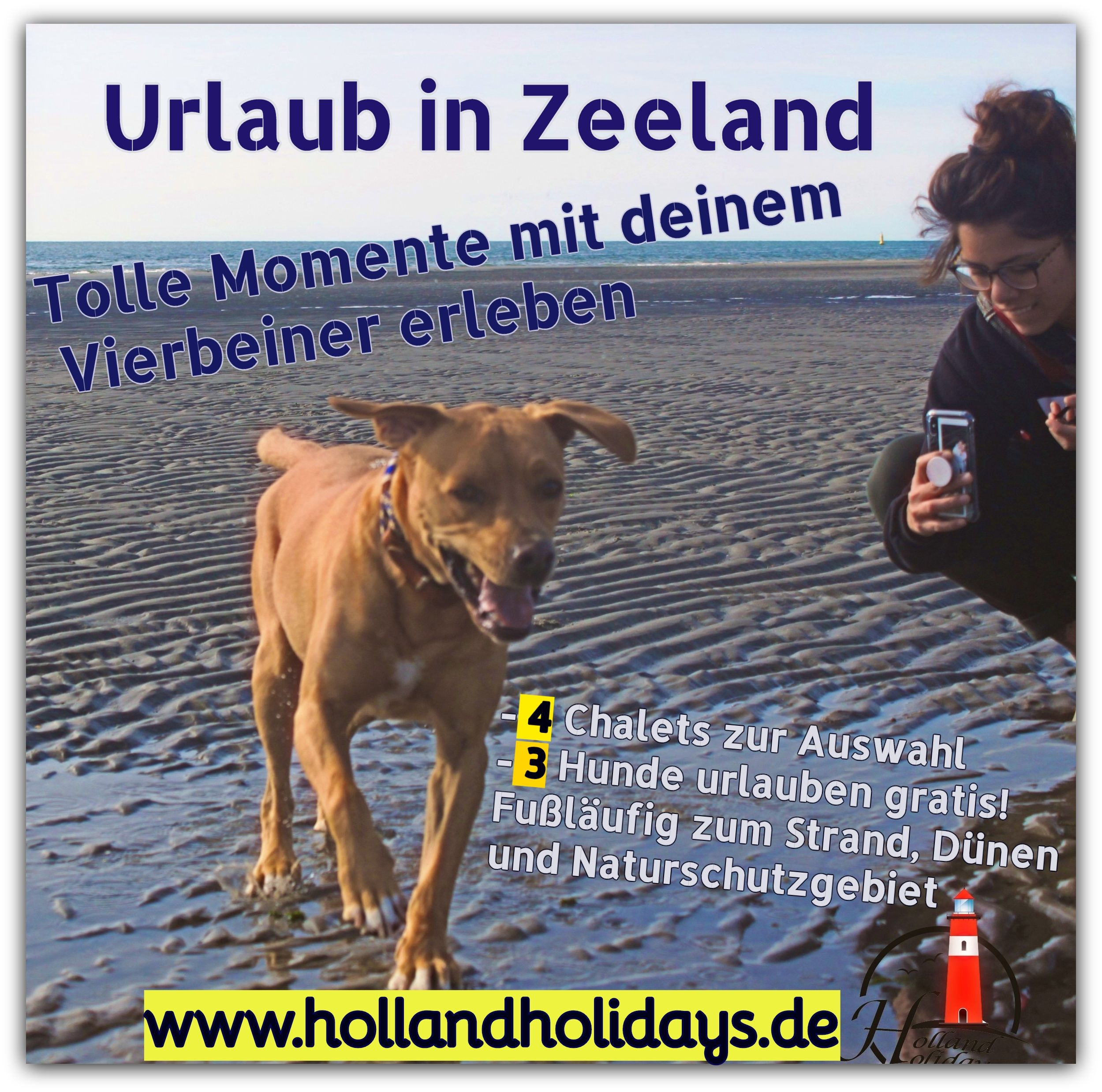 Hunde Lieben Zeeland In 2020 Urlaub Mit Hund Urlaub Hunde Und Kinder