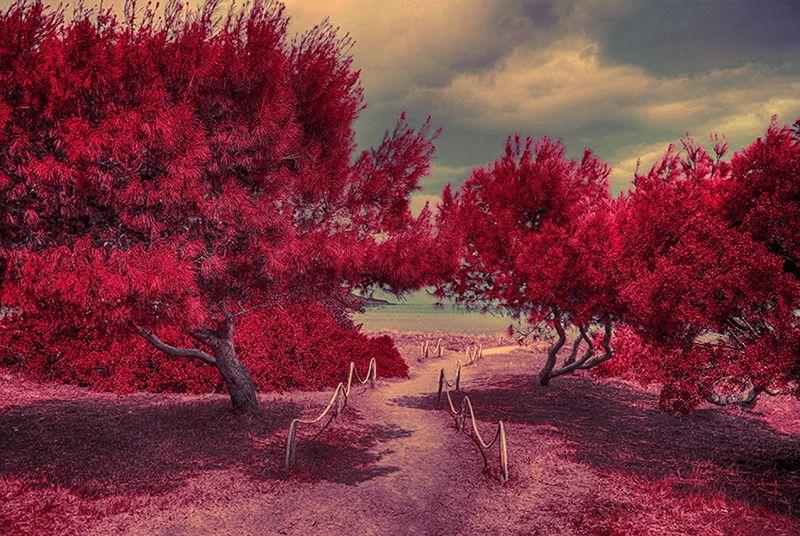 Red Beach, Sardinia, Italy