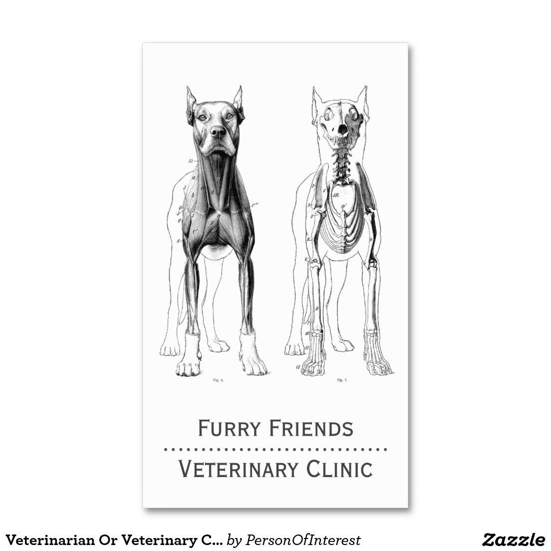 Veterinarian Or Veterinary Clinic Business Cards | Veterinarians ...