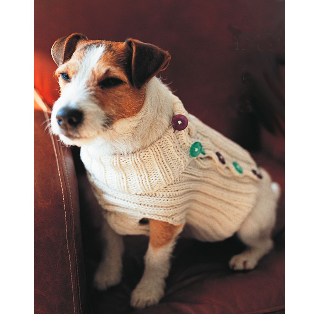 Give Rover a Makeover: Knit a Dog Jumper | Dog jumpers, Easy ...