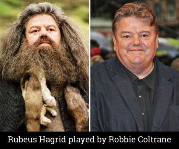 Celebrity Thechive Harry Potter Actors Harry Potter Play Hagrid