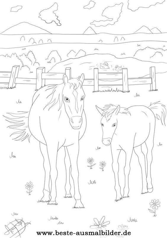 beste ausmalbilder in 2020  ausmalbilder pferde
