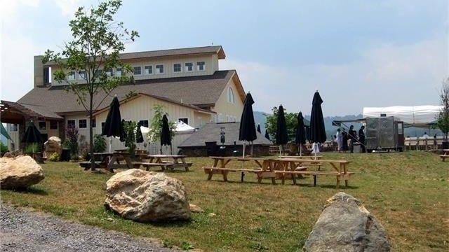 Barrel Oak Winery, VA
