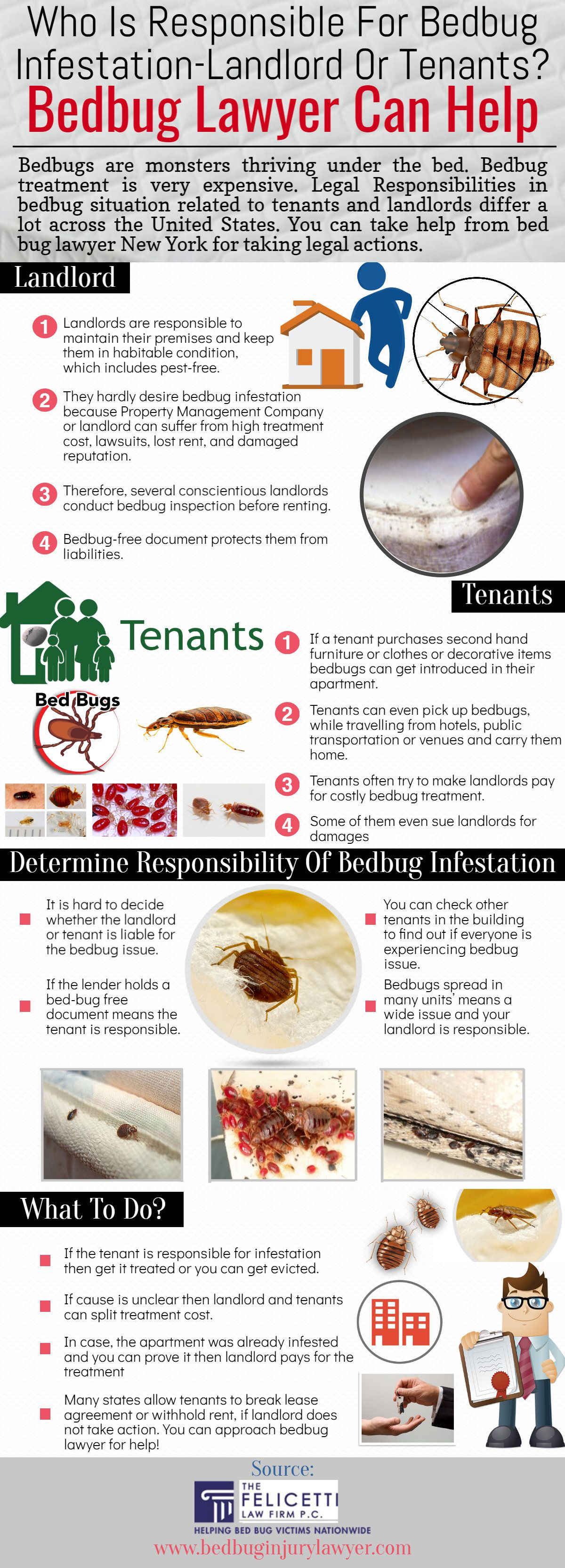 insect bed how cost does bedbug treatment a much control bug thumbnail sammykallbriert