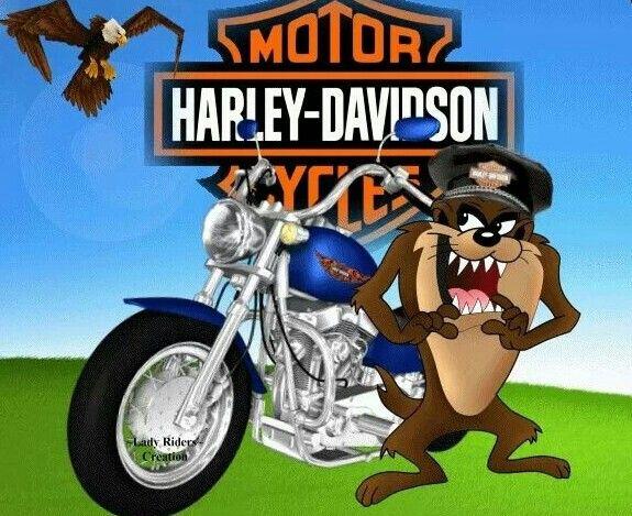 Muy feliz cumpleaños Harley !!! Bc0d6a580e422badb1eea158dbaf6bdc