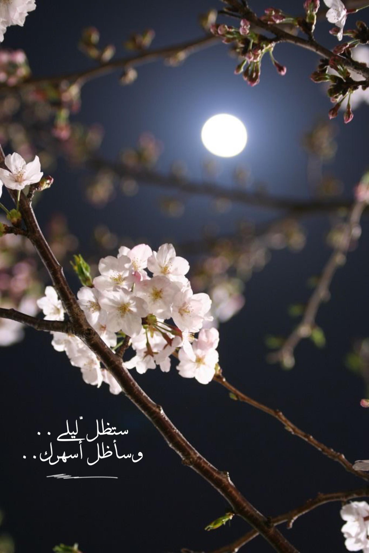 حب حبيبي احبك عشق تصميم ليل قمر سهر قصيد قصائد بالعربي سنابات خاطرة خواطر Moonlight Photography Night Sky Photography Moon Photography
