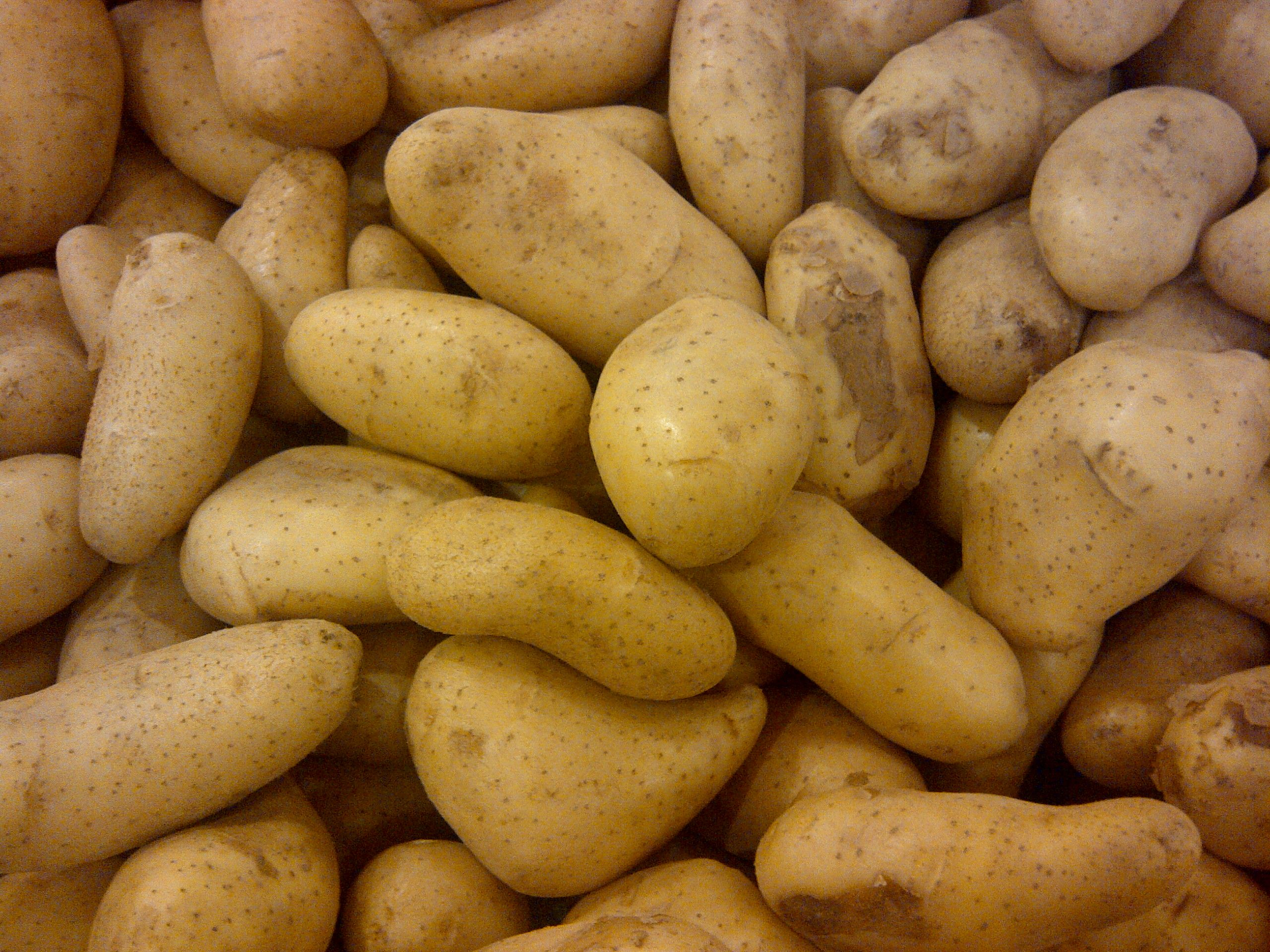 nice Potato HD Image AmazingPict Wallpapers