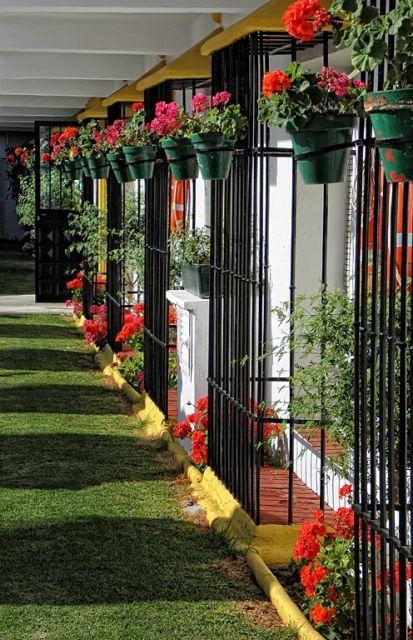 rejas geranium | puerta- portones- rejas | pinterest | rejas