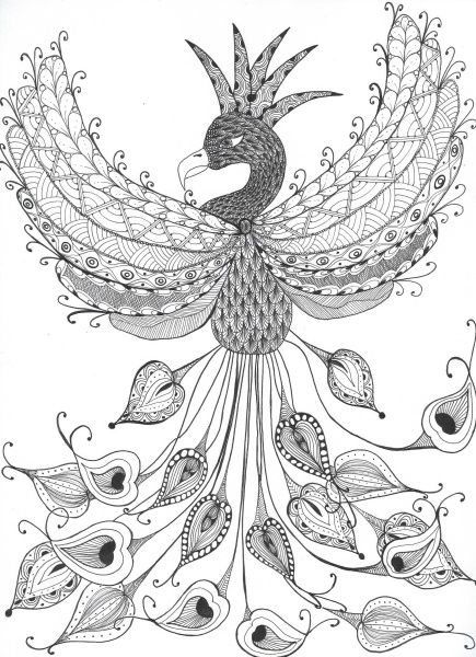 Fresh From The Ashes - Phoenix Style Challenge coloring pages - fresh detailed peacock coloring pages