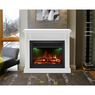 25 Inch Electric Fireplace with doors
