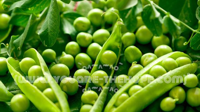 أهم المعلومات والفوائد عن البازلاء الخضراء Fruit Grapes Peas