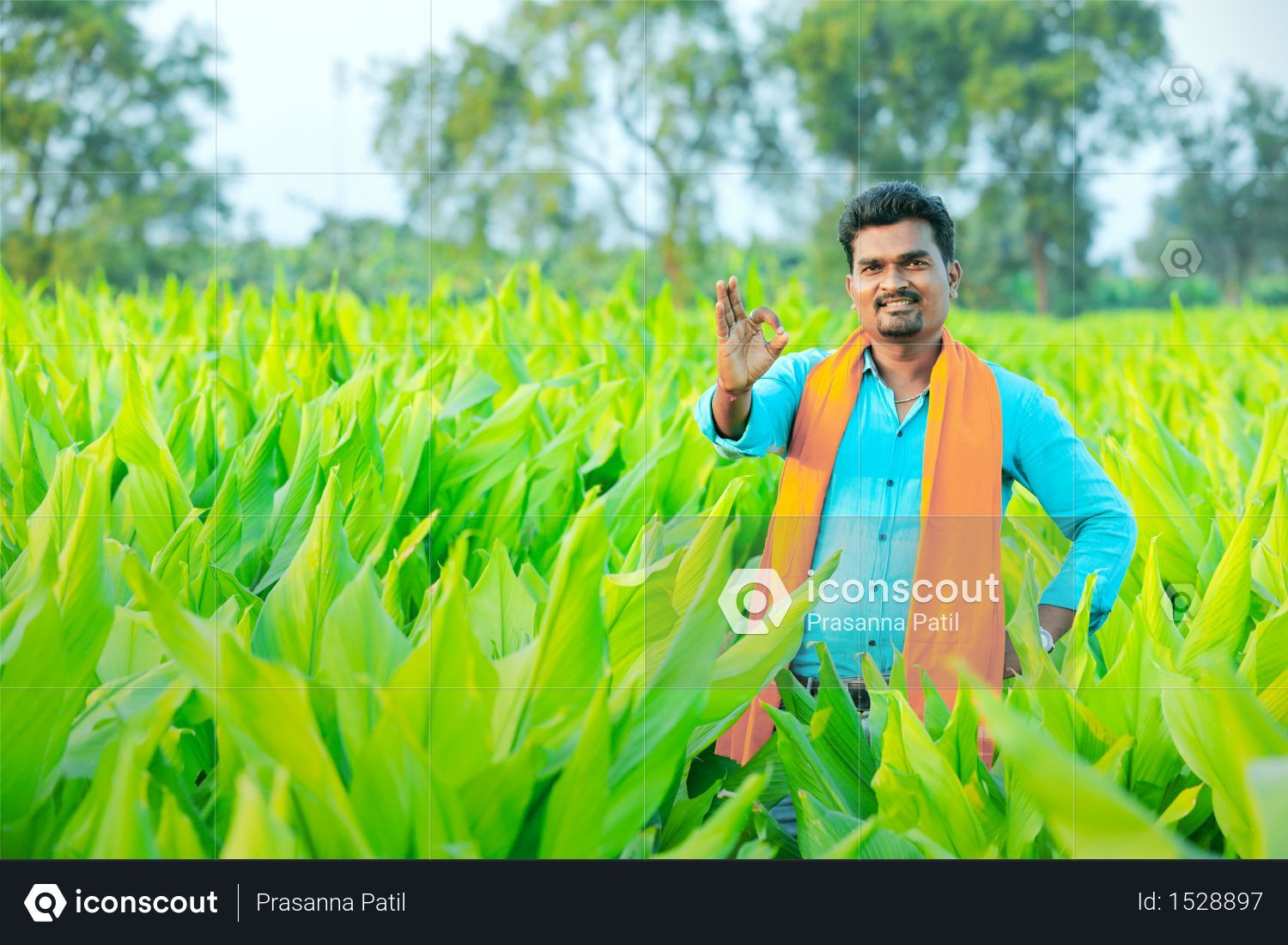 Premium Young Indian farmer at field Photo download in PNG