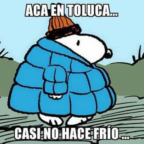 Pin De Normiux En Memes En Espanol Hace Frio Frio Memes En Espanol