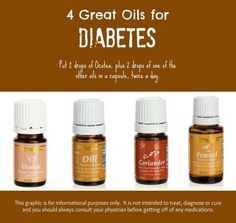 aceite de ocotea y diabetes tipo 1