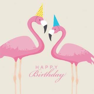 bc1128e084c6708fb287363d17eba889 flamingos from my daughter passionate for flamingos pinterest
