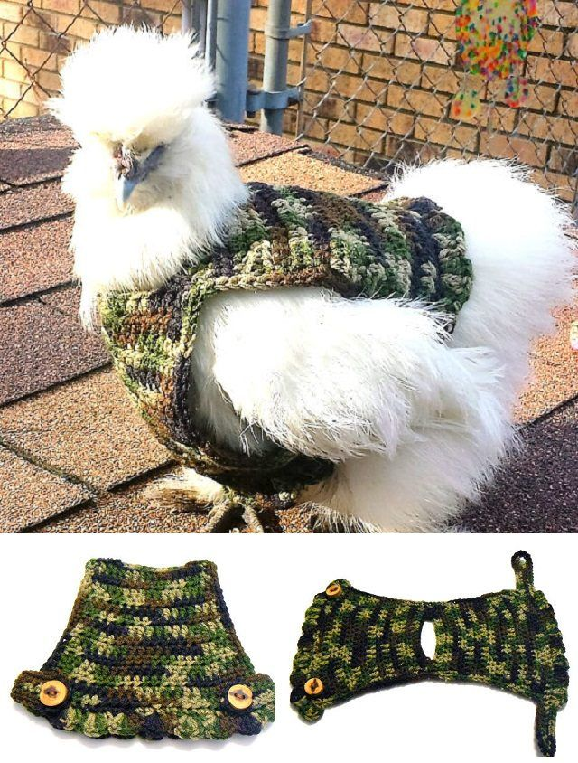 Chicken Sweater Crochet Patterns | The WHOot #sweatercrochetpattern