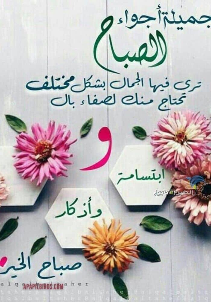 كروت صباح الخير مع دعاء Beautiful Morning Messages Good Morning Images Flowers Good Morning Cards