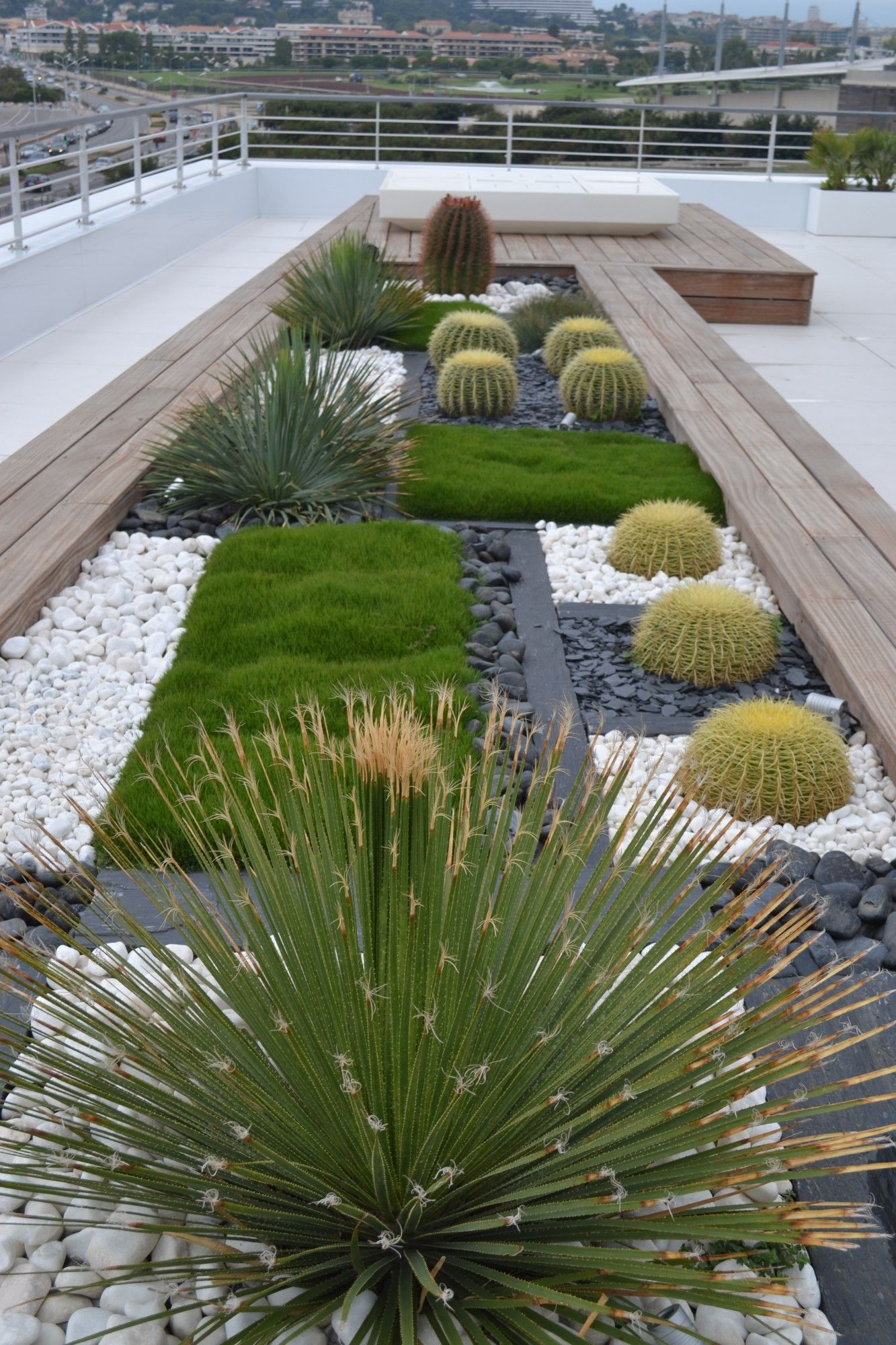 espace géométrique, plaque de Schistes, Echinocactus, galets ...