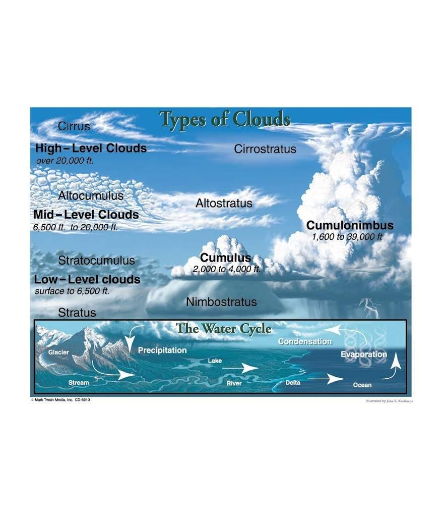 Types Of Clouds Chart Grade 4 8 Cloud Type Clouds For Kids Clouds