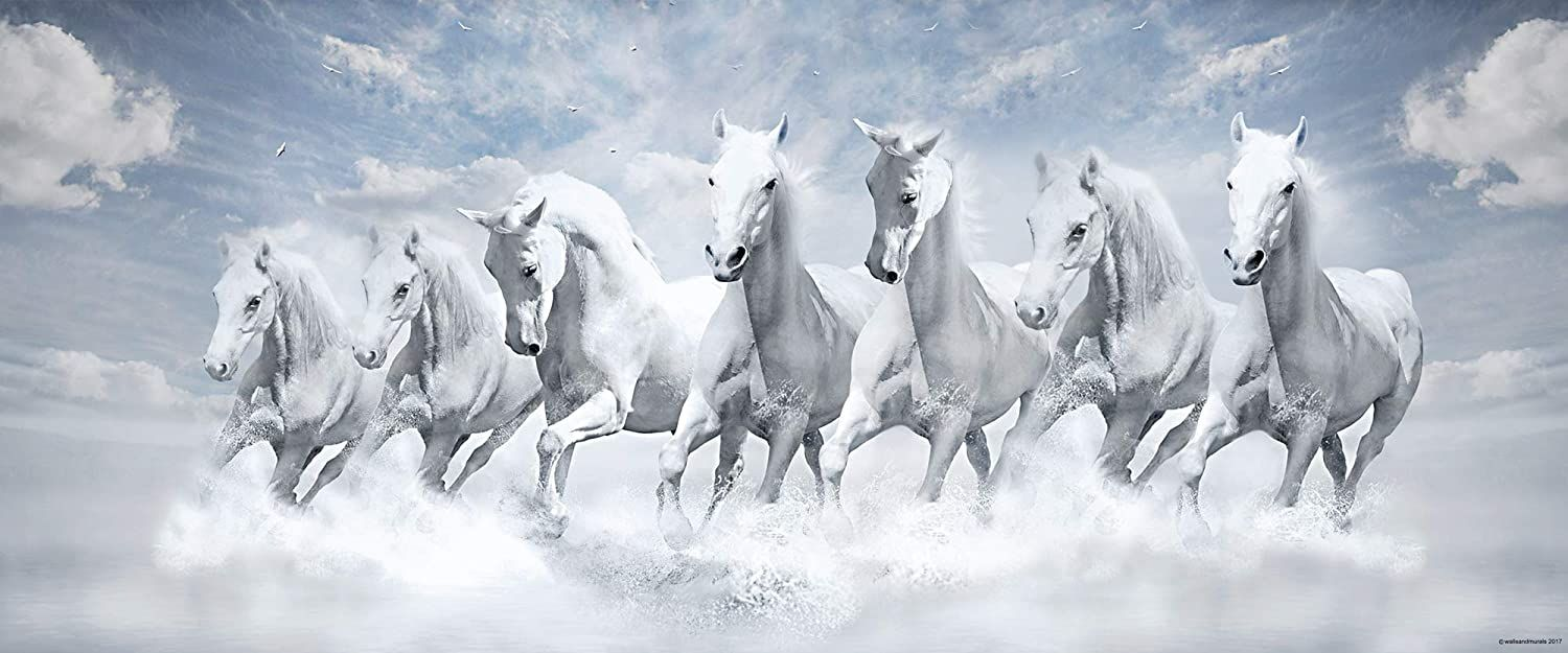 Walls And Murals Vinyl Landscapes Animals Painting Multicolour 20 X 48 Inch Amazon In Home In 2021 Horse Wall Art Canvases White Horse Painting Horse Wallpaper Full screen full hd white horse