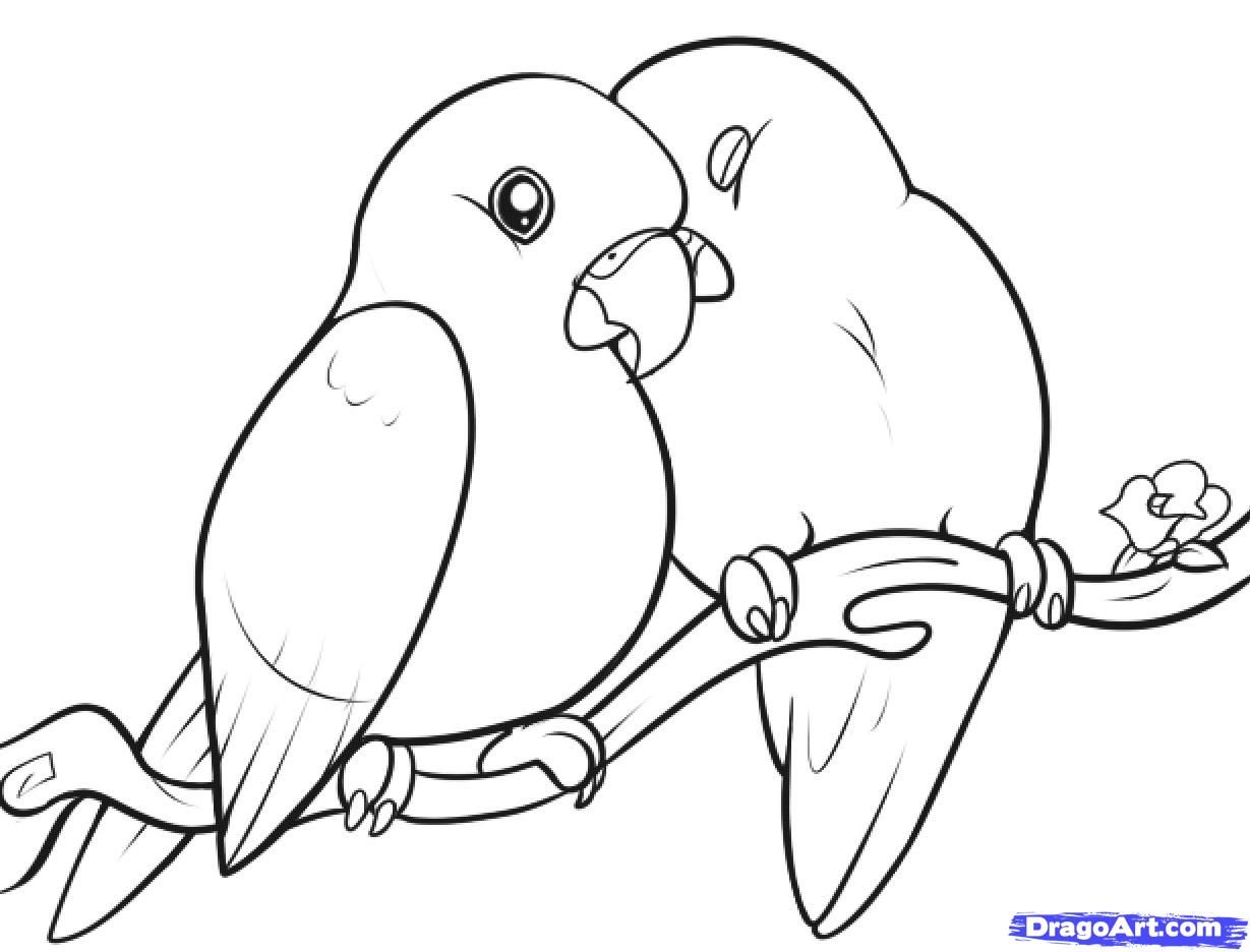 Love Birds Coloring Bird Drawings Drawing Pictures Of Birds Love Birds Drawing