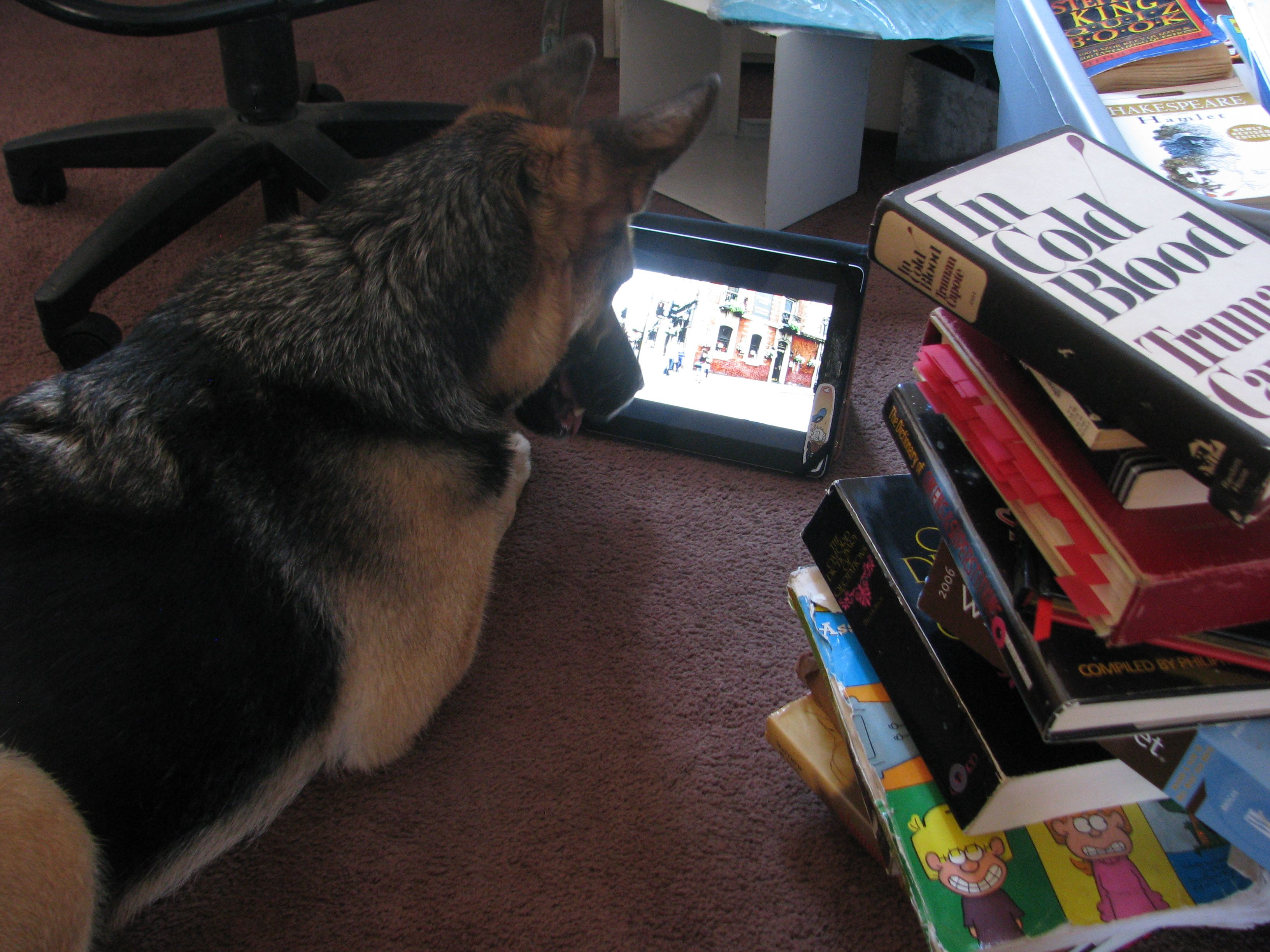 Kyreah watching a documentary about Scotland Yard.