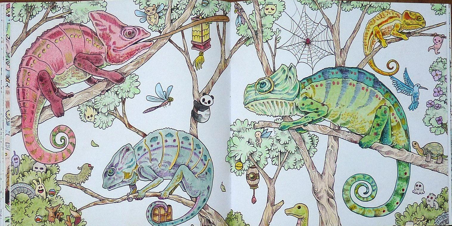 Uit Het Boek From The Book Animorphia Gekleurd Door Adri Colored By Adri Animorphia Coloring Book Coloring Books Animorphia Coloring