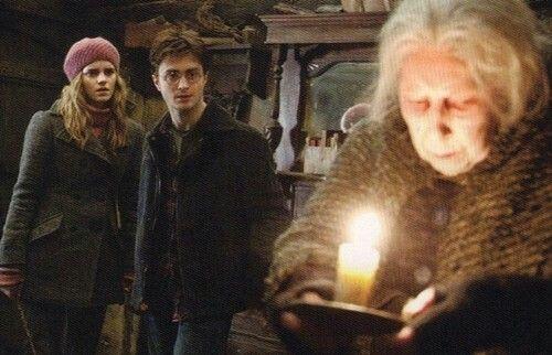 Harry Hermione Bathilda Bagshot Harry Potter Hermione Granger Harry Potter Characters Harry Potter Hermione