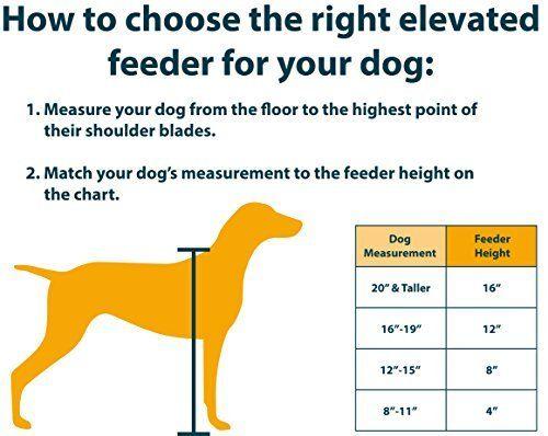Chart Elevated Dog Feeder Dog Food Stands Elevated Dog Feeder