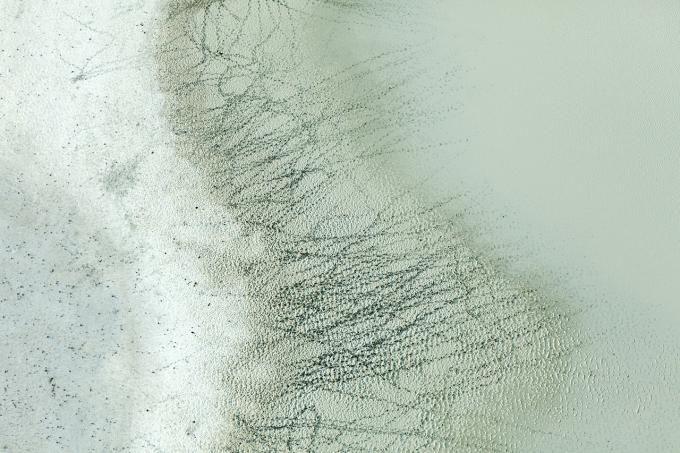 Tracks and Water, Botswana  Zack Seckler 