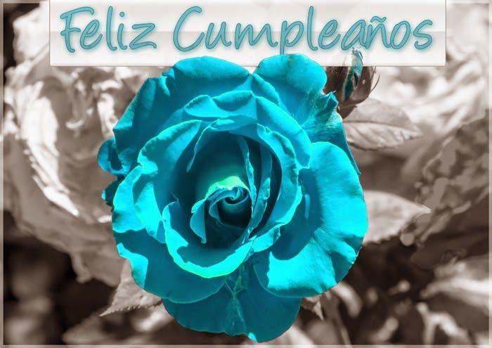 Tarjetas De Cumpleaños Para Mujeres Con Flores, Parte 3