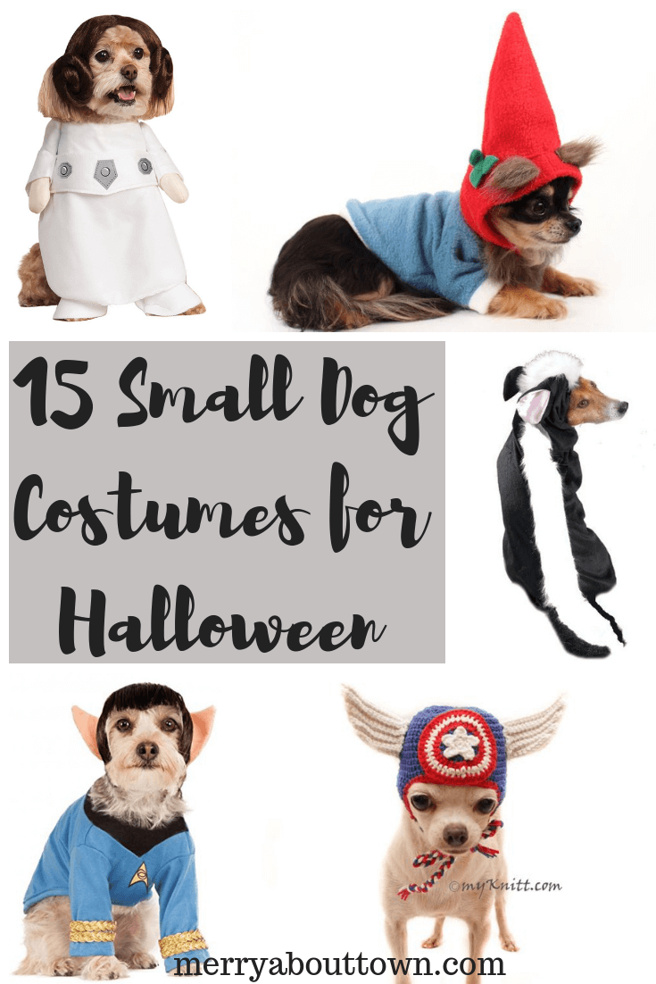 Forum on this topic: The 20 Healthiest Halloween Costumes, the-20-healthiest-halloween-costumes/