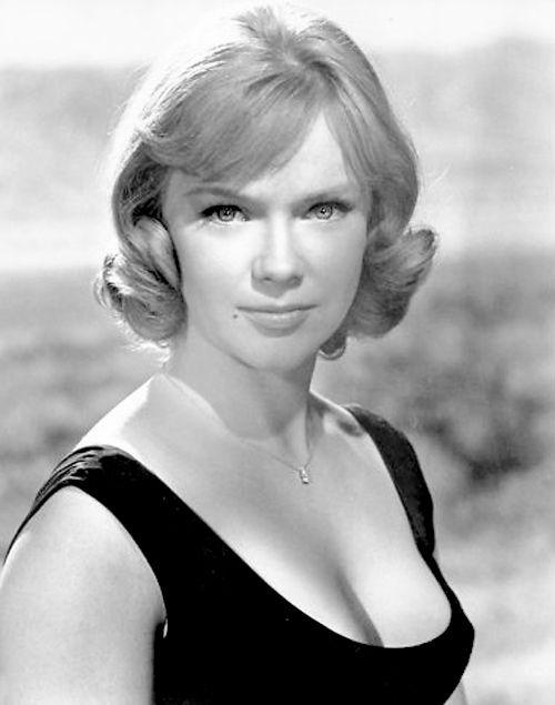 anne francis measurementsanne francis wikifeet, anne francis actress, anne francis dallas, anne francis imdb, anne francis, anne francis forbidden planet, anne francis quilts, anne francis twilight zone, anne francis measurements, anne francis feet, anne francis net worth, anne frances robbins, anne francis photos, anne francis funeral, anne francis find a grave, anne francis condominium, anne francis columbo, anne francis hot, anne francis height