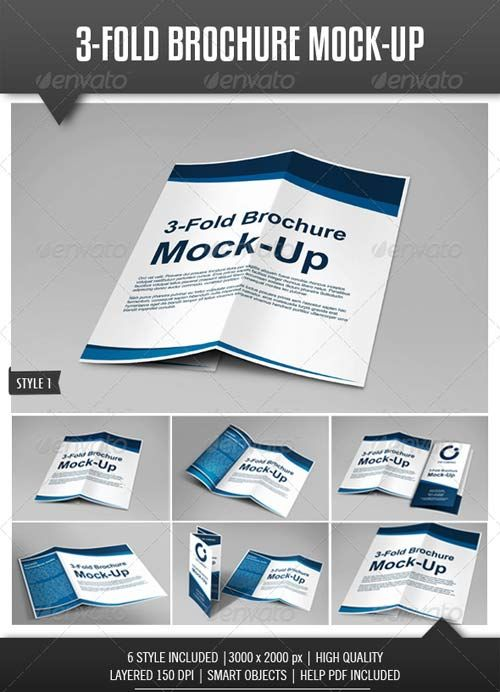 Dl Various  Design  Mock Ups    Tri Fold Brochure
