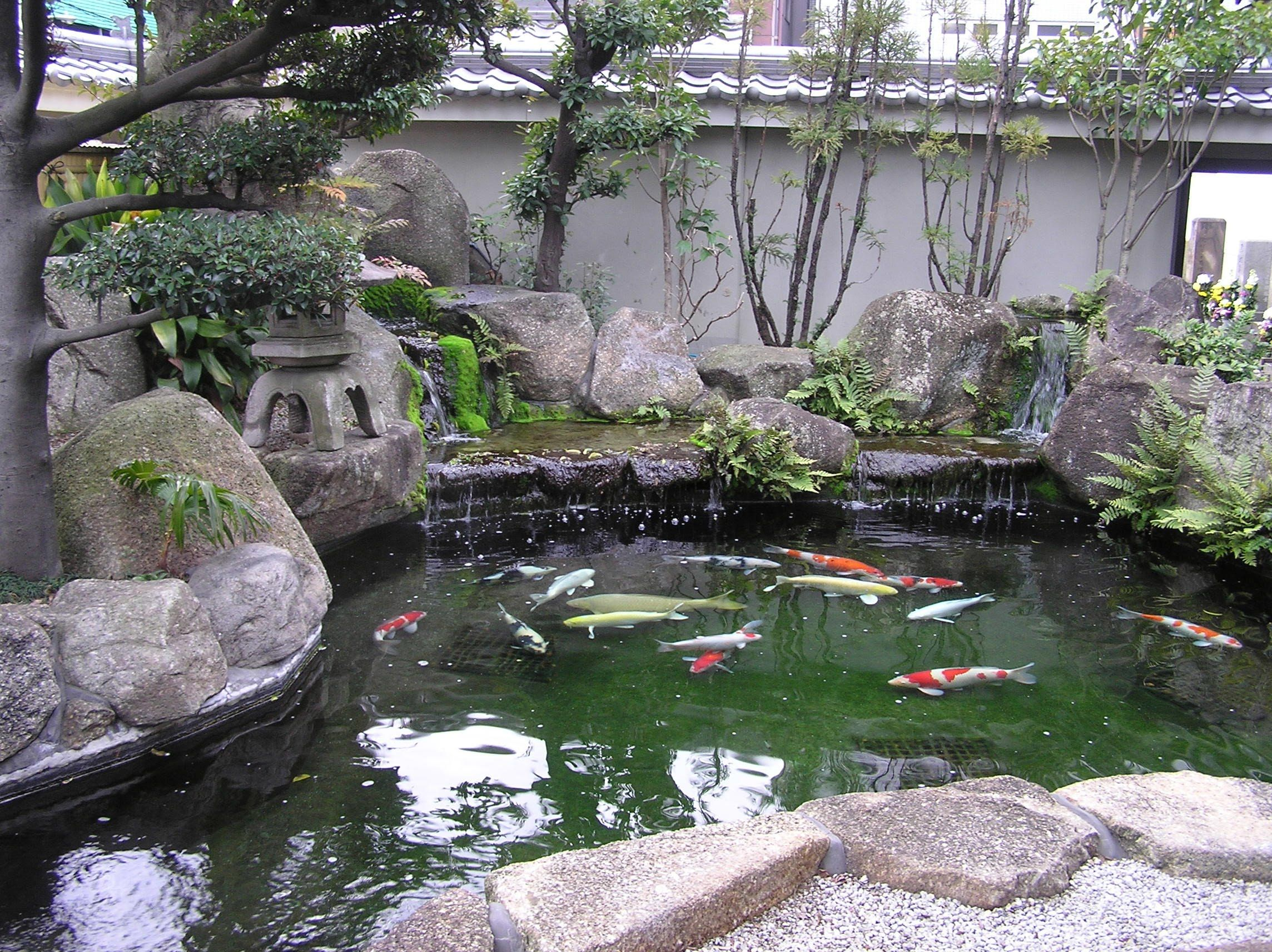 Pin by kc brady on project 3 pond diorama reference for Japanese style pond