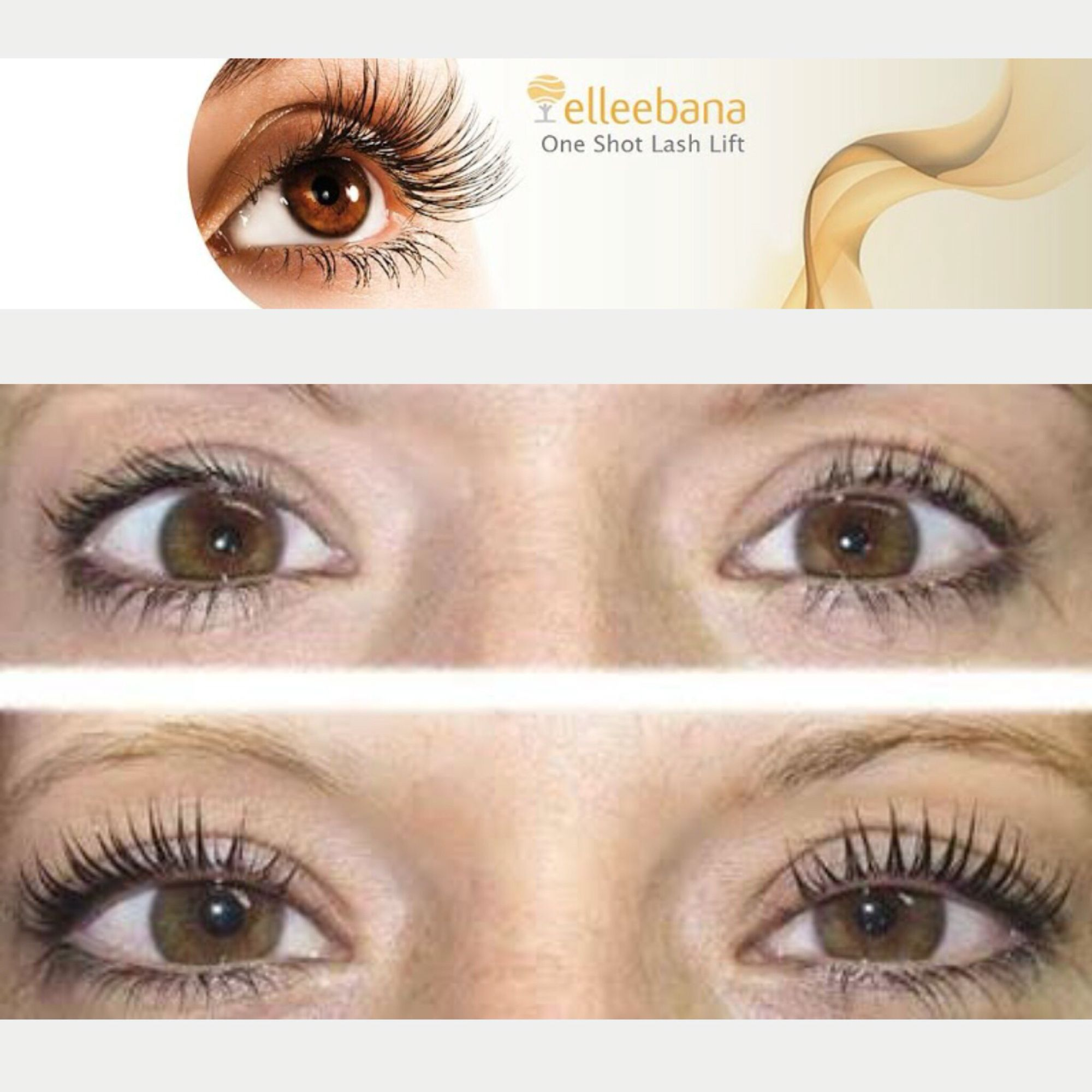 Offer For The Month Of February Eyelash Perm And Eyelash Tint