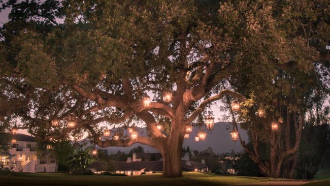 Illume By Paul Ferrante At Ojai Valley Inn Spa Luxury Travel Magazine Outdoor Ojai Valley Inn And Spa Outdoor Tree Lighting
