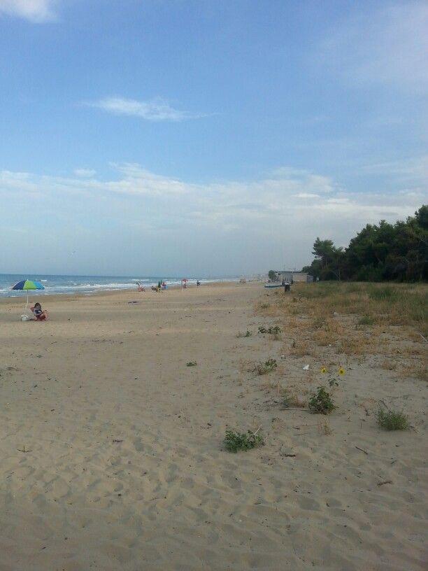 La spiaggia di pineto degli abruzzi