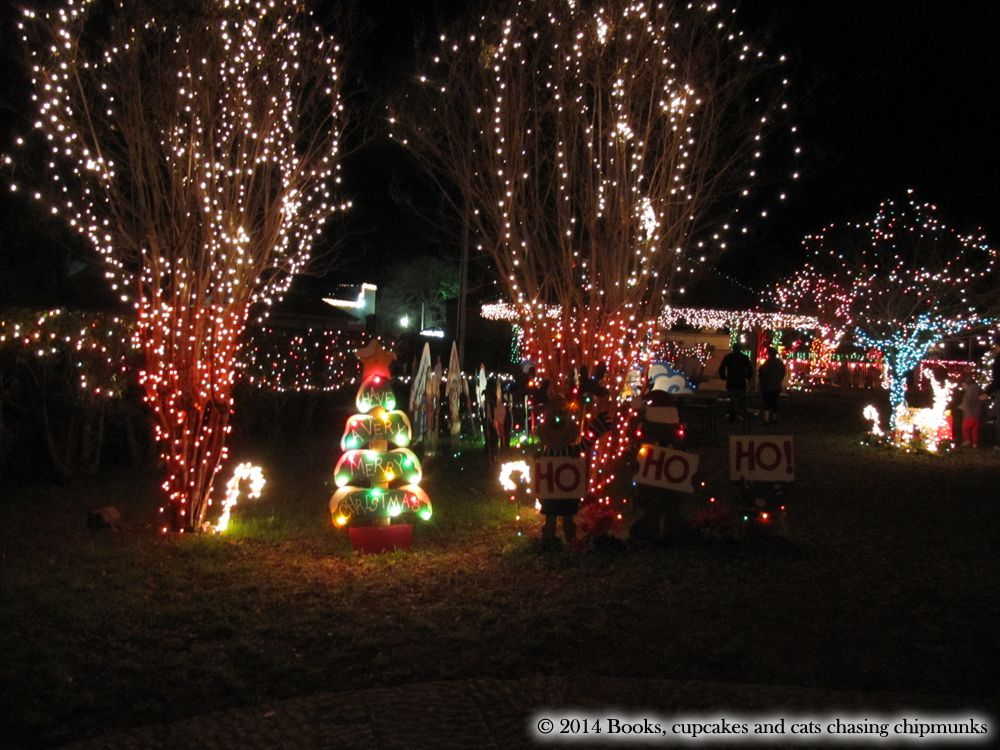 Christmas In Texas Johnson City S Christmas Lights Christmas Lights Christmas Christmas Time