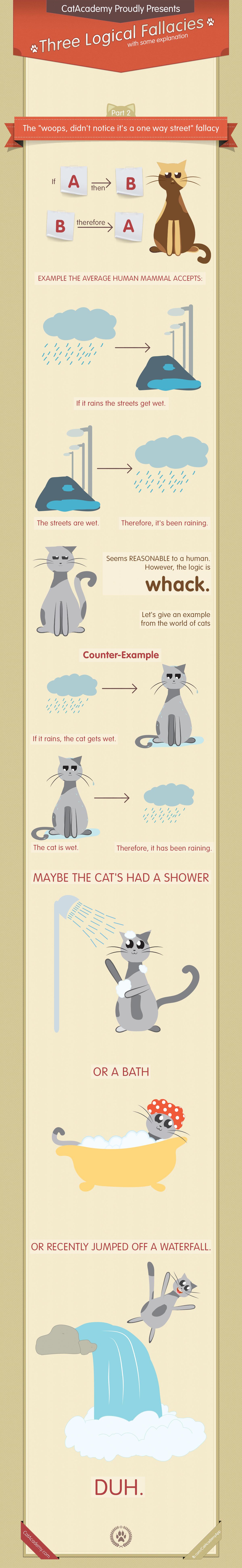 Three Logical Fallacies Infographic Logical Fallacies
