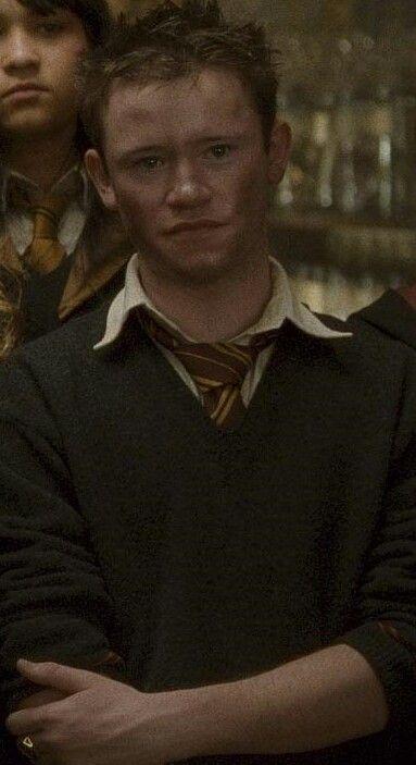 Seamus Finnigan Harry Potter Characters Harry Potter Actors Harry Potter