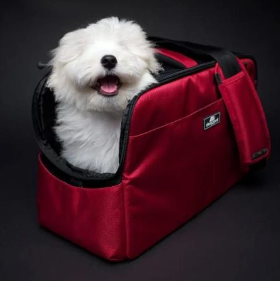 Sleepypod Atom In Cabin Dog And Cat Carrier Keepdoggiesafe Com Keep Doggie Safe In 2020 Cat Carrier Dog Cat Dog Car Safety