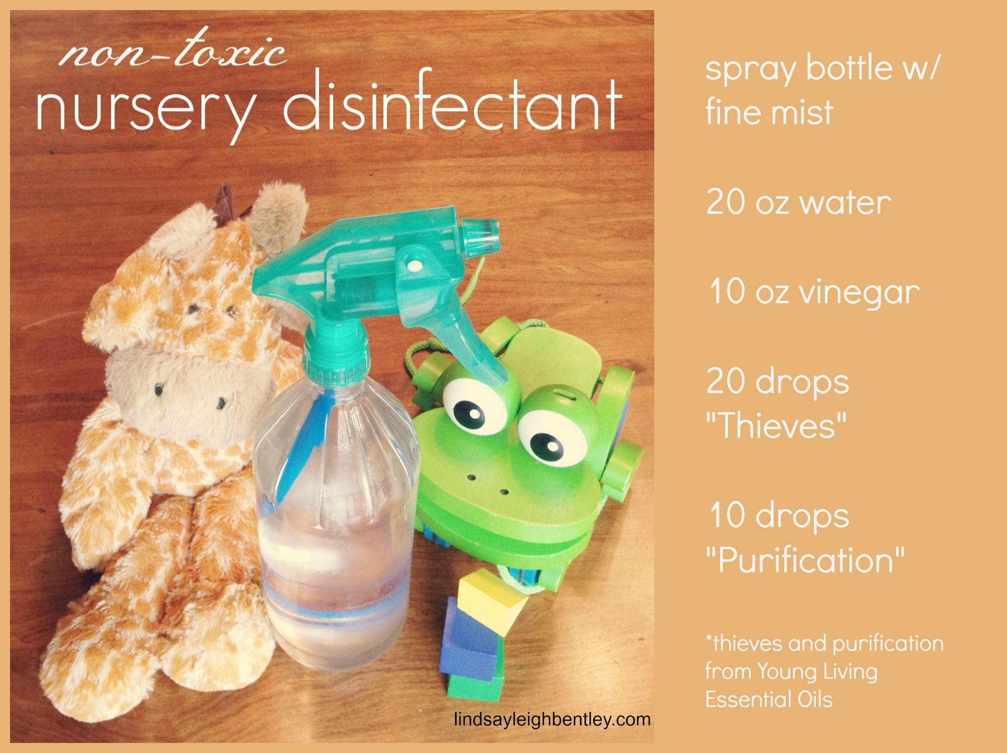 DIY non-toxic nursery & toy disinfectant | Everything's A
