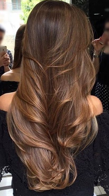 Vanessarozenwald Long Brunette Hair Long Hair Styles Hair Styles