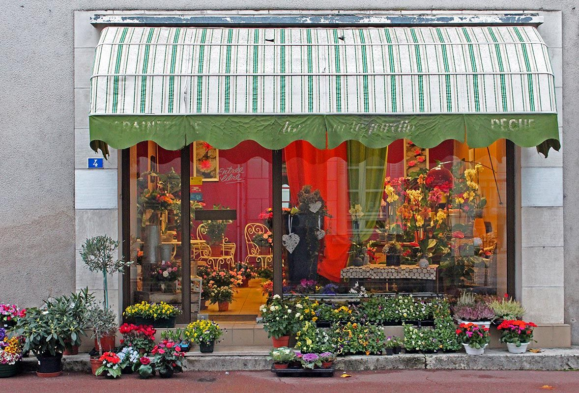 Flower Shop Paintings Lots Of Plants And Flowers To Choose
