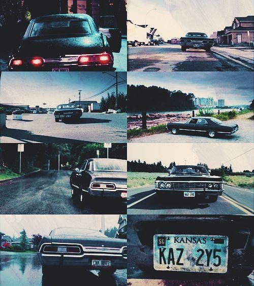 Impala love