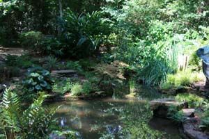 This is from Mercer Arboretum on the edge of Spring TX! The history
