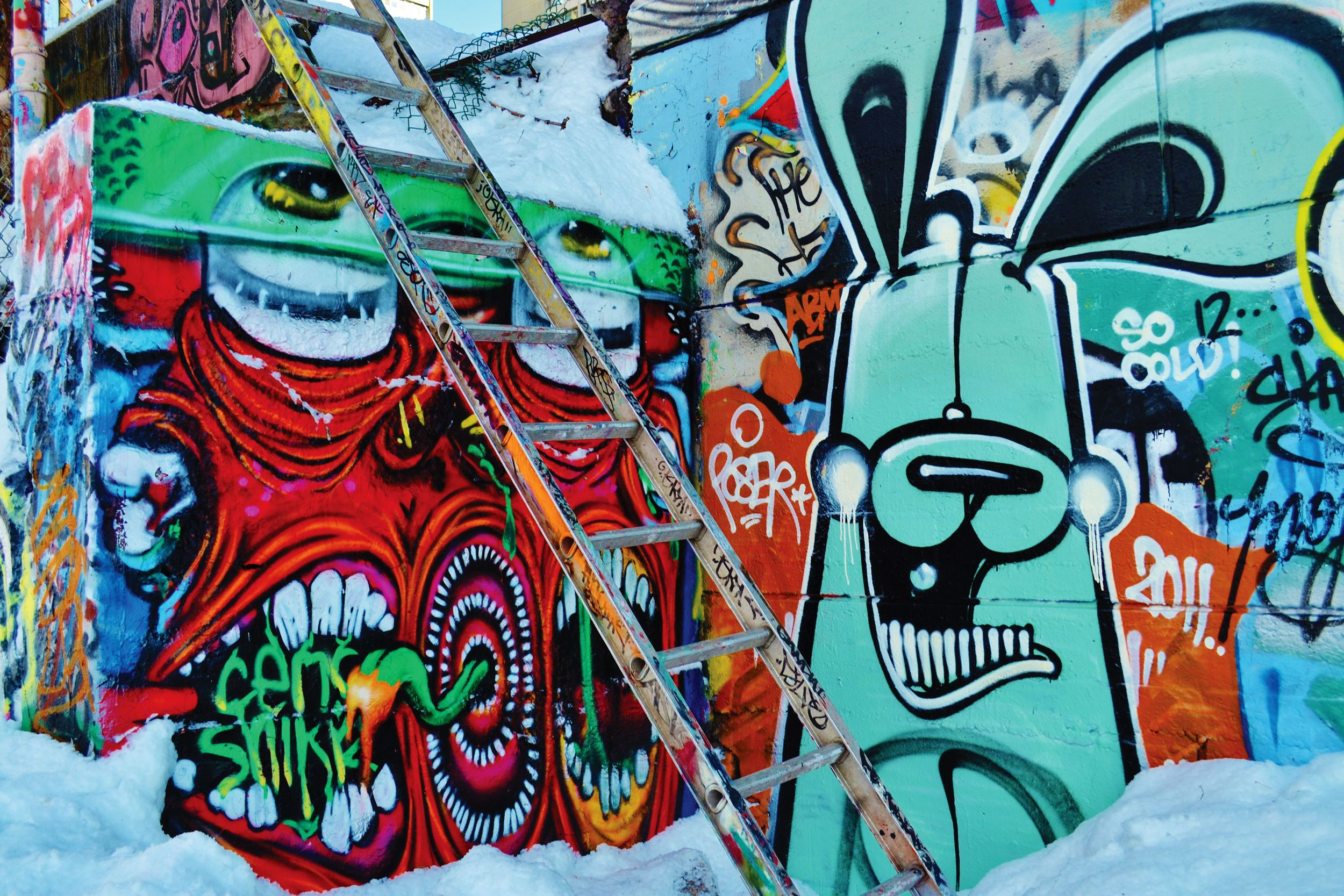 Graffiti art the fulcrum how did you get into graffiti art