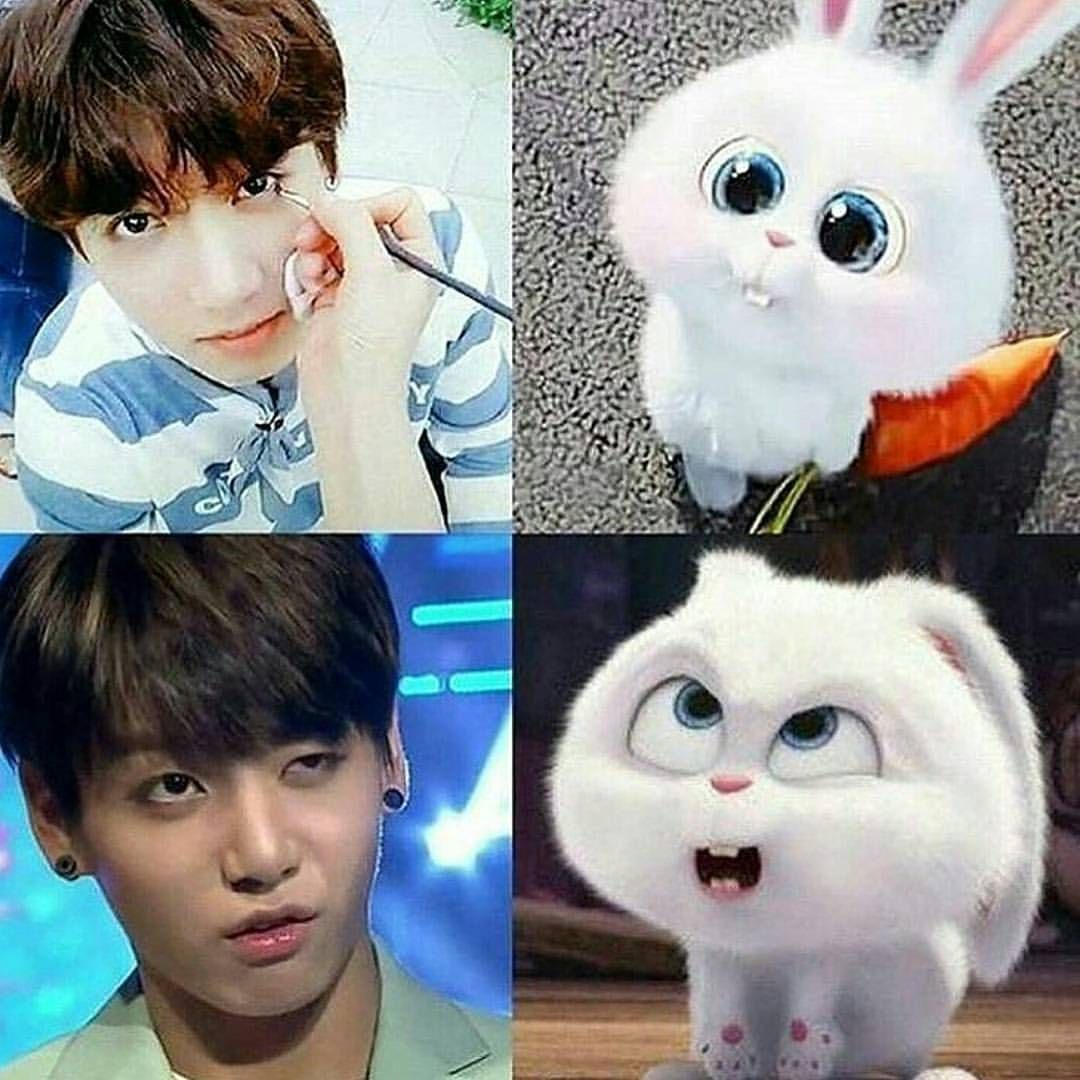 Jungkook And Snowball From Secret Life Of Pets Kpop Memes Bts Bts Funny Bts Funny Videos
